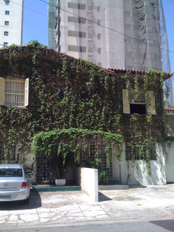 Sao paulo ivy building