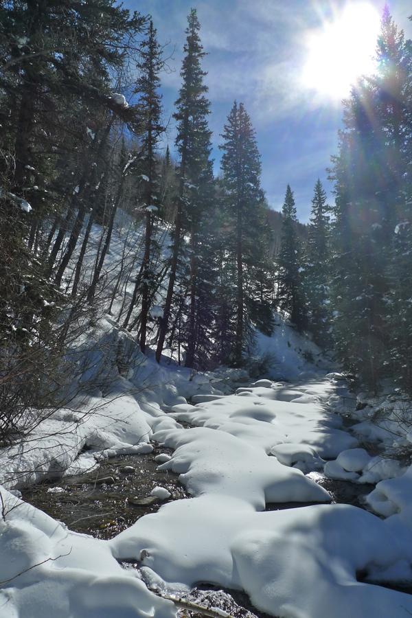 Snowshoeing creek