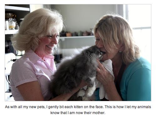 Martha Stewart biting her kittens