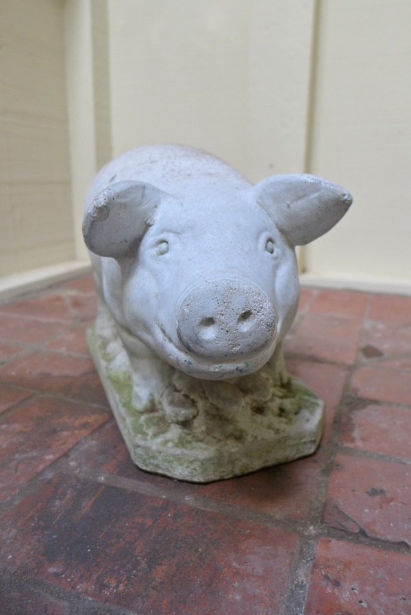 Four seasons pig