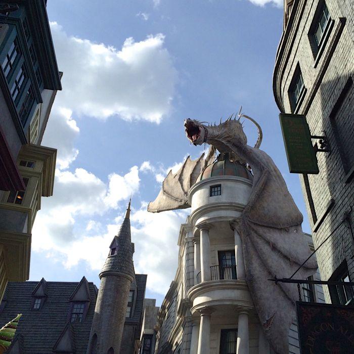 Harry Potter dragon2