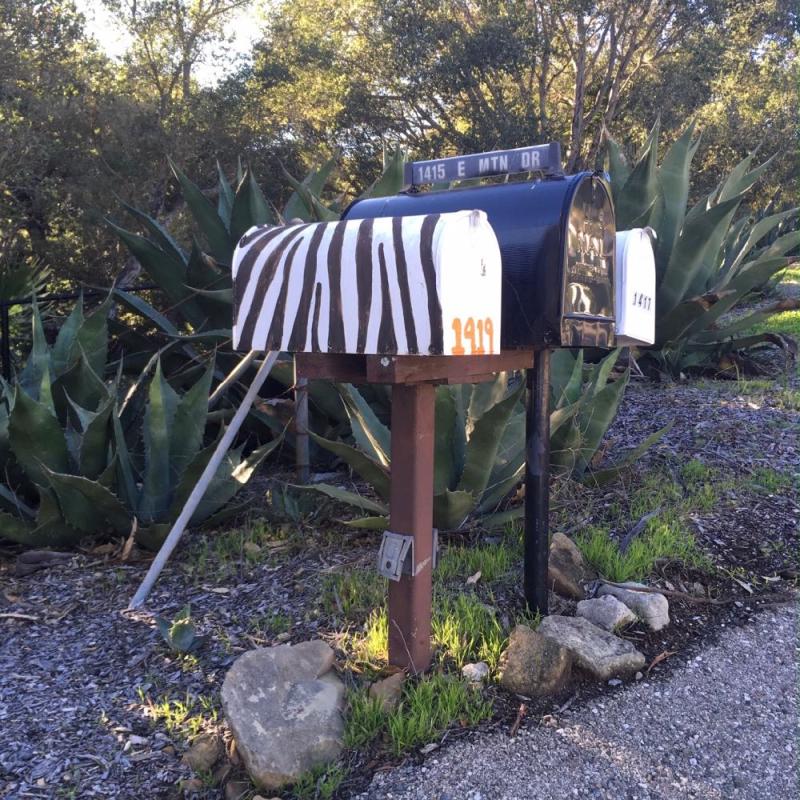 Montecito zebra mailbox