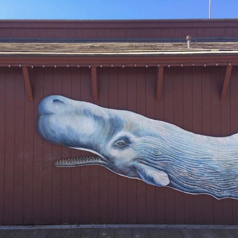 Moby Dick mural at Stearns Wharf Santa Barbara