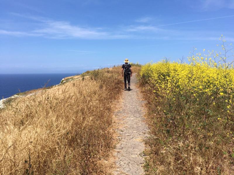 Canyon Point Loop on Santa Cruz Island5