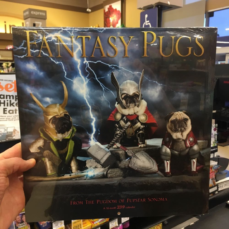 Fantasy Pugs