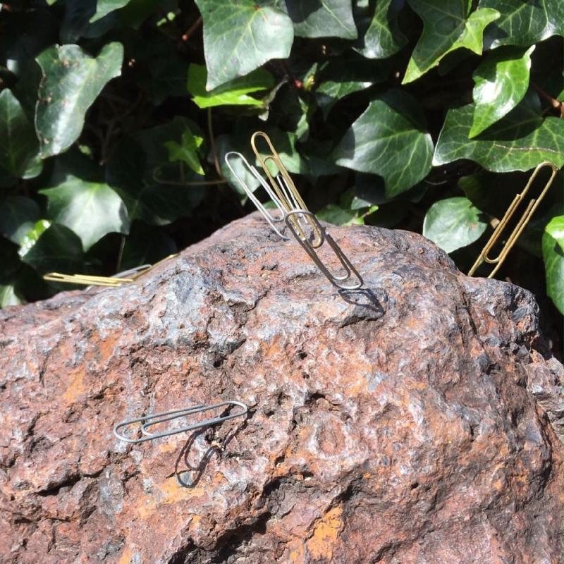 Lotusland magnetic rock