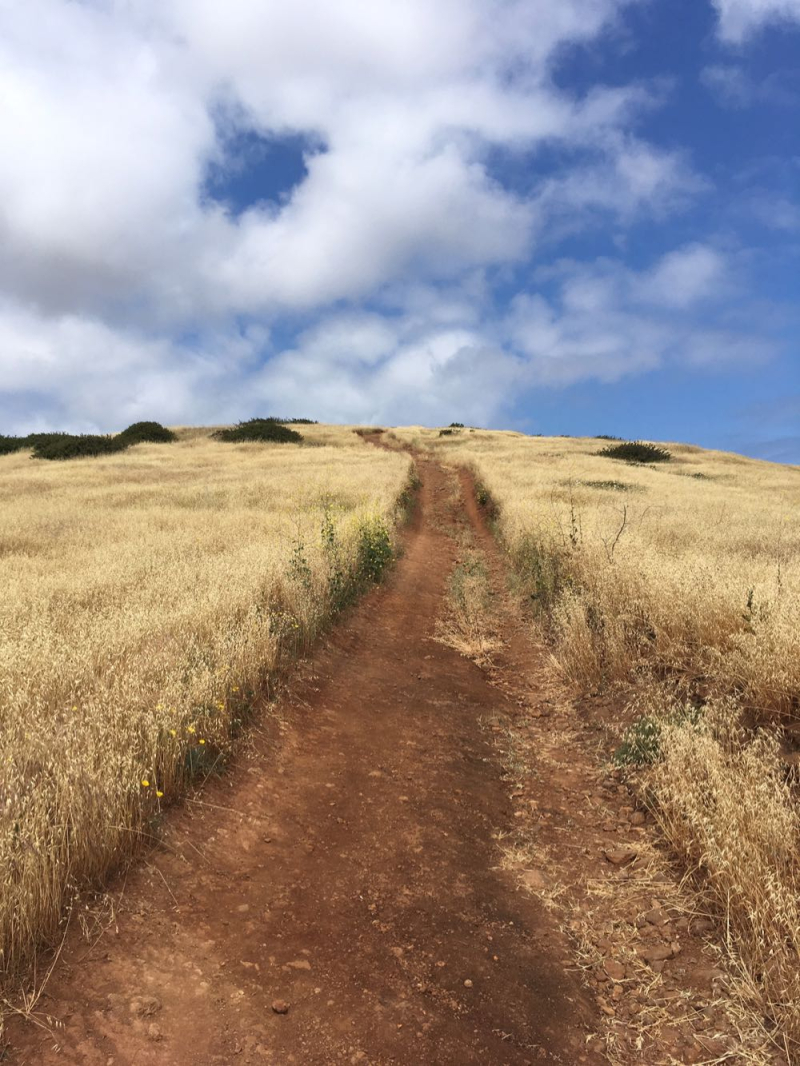 Santa Cruz Island walking toward Smugglers Cove4