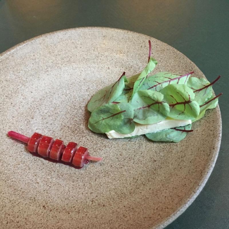 Volt rhubard dessert