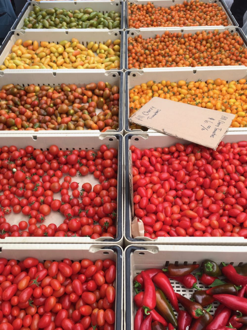 Tomatoes at Santa Barbara Farmers Market