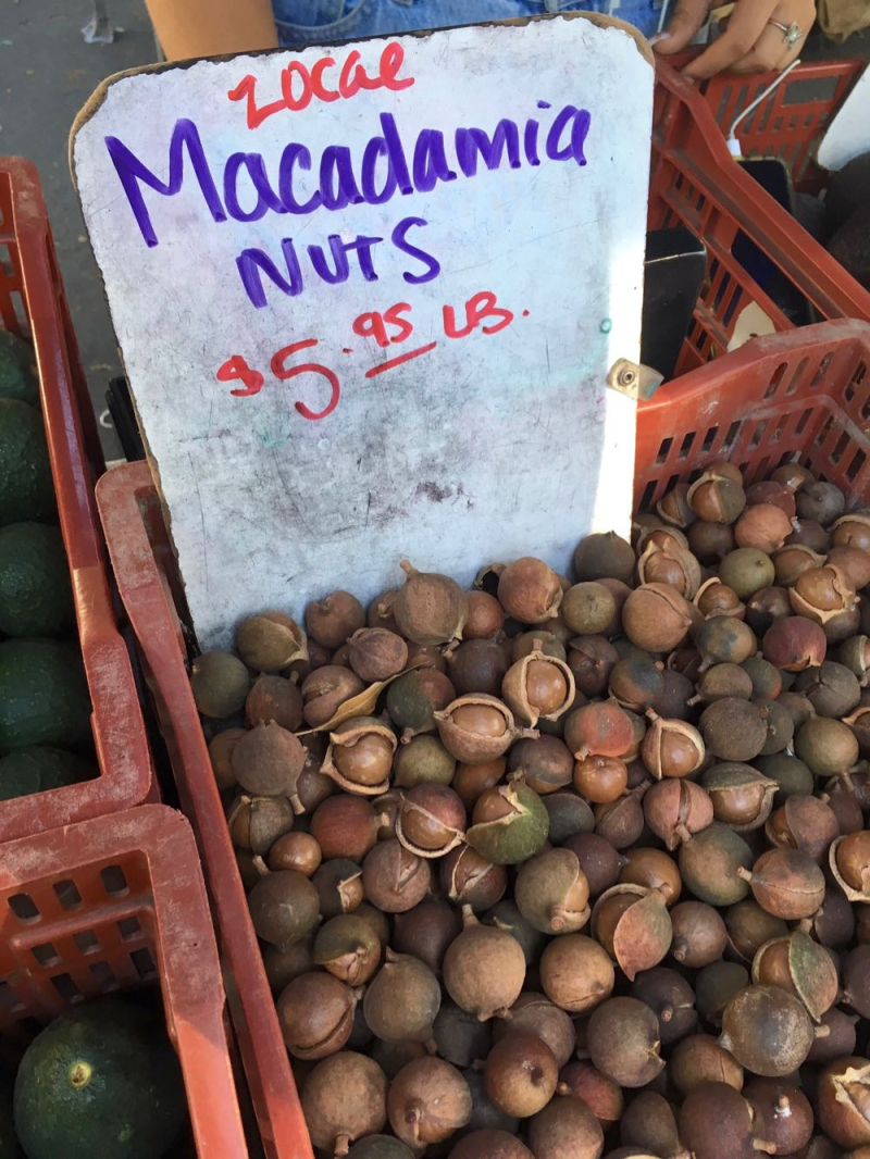 Macadamia nuts at Santa Barbara Farmers Market