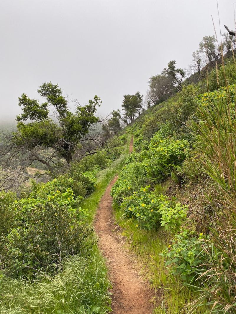 Girard trail